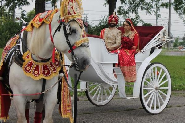 horse cart for marriage