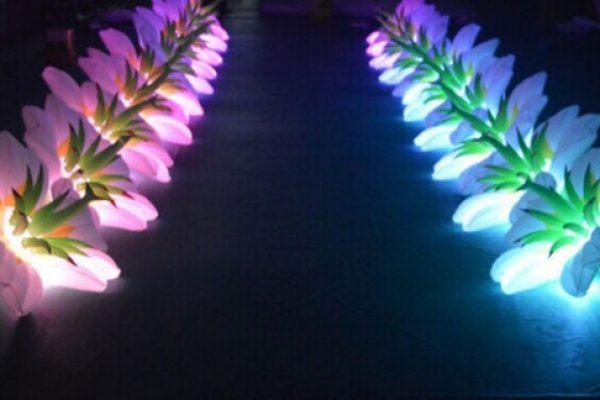 Lighting Decorators